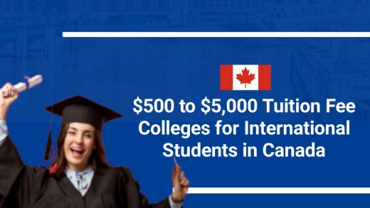 Tuition Fee Colleges for International Students